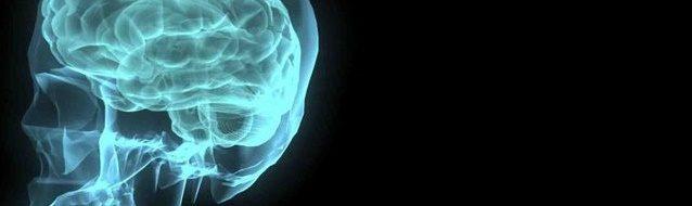 neurologist_autoimmune